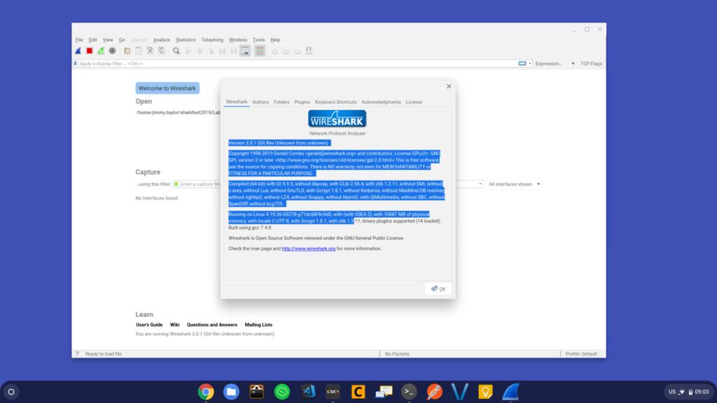 Wireshark 3.0.1 on ChromeOS