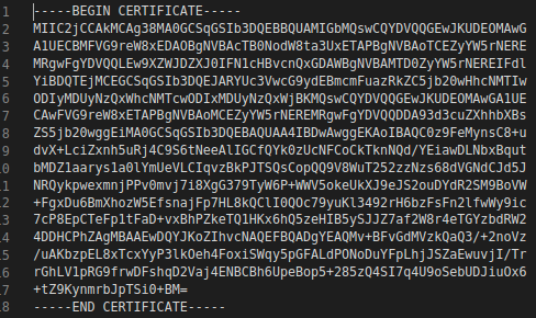 Example text output of base64/pem certificate.